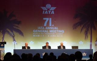 Focus AGM IATA 2015