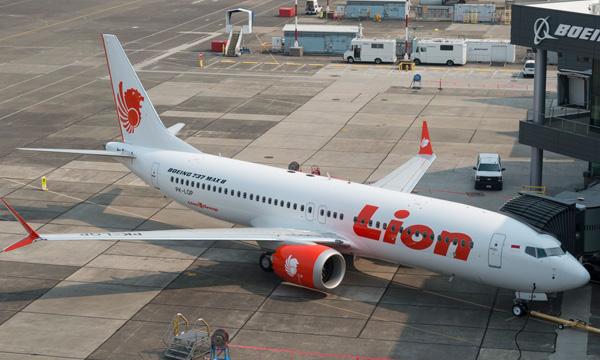 Accident du 737 MAX de Lion Air : un rapport d'enquête vraiment préliminaire